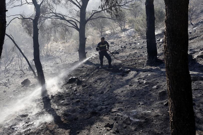 снимка 1 Горският пожар около Атина е овладян