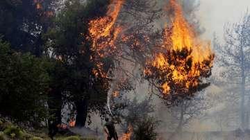 Гърция е поискала помощ от ЕС в борбата с пожарите