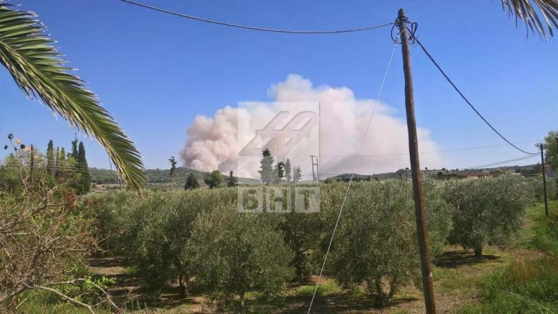 снимка 3 Овладян е пожарът  на полуостров Халкидики (ВИДЕО / СНИМКИ)