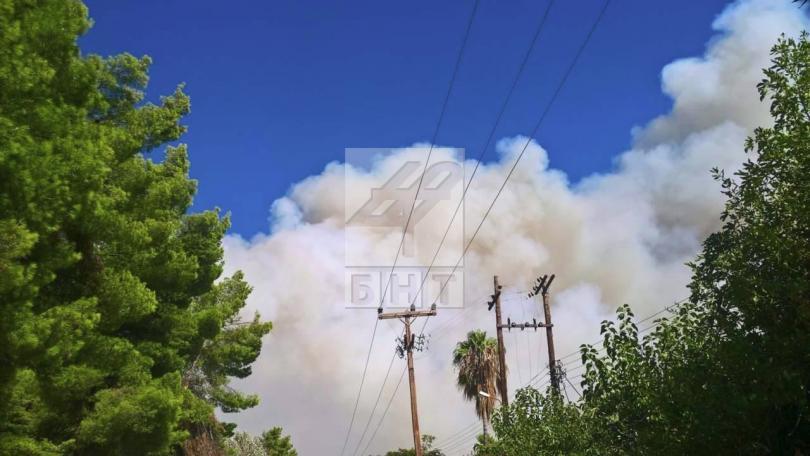 снимка 5 Овладян е пожарът  на полуостров Халкидики (ВИДЕО / СНИМКИ)