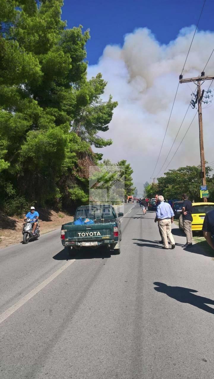 снимка 6 Овладян е пожарът  на полуостров Халкидики (ВИДЕО / СНИМКИ)