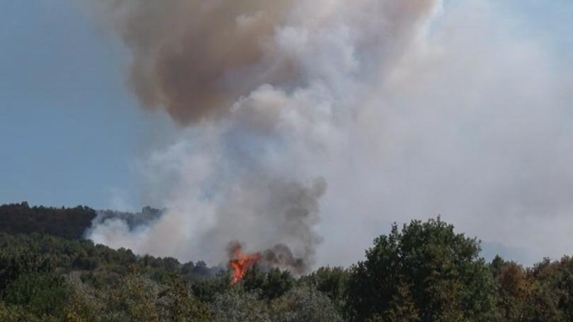 Голям пожар избухна следобед до хасковското село Брягово. Огънят се