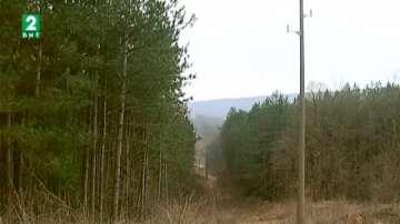 Горските стражари са извършили над  3000 проверки в Североизточна България