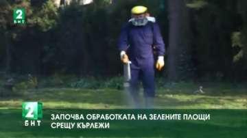 Започва обработката на зелените площи във Варна срещу кърлежи