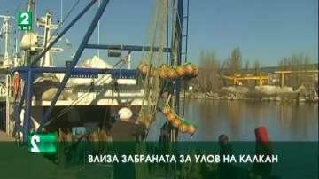 Влиза забраната за улов на калкан