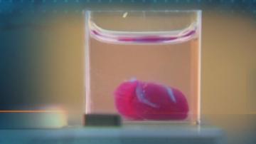 Израелски учени принтираха 3D сърце