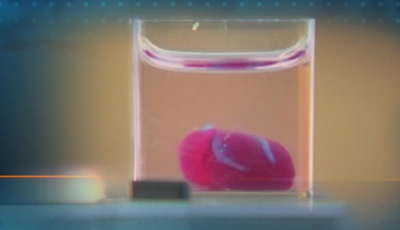 Снимка: Израелски учени принтираха 3D сърце