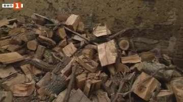 Раздават конфискувани дърва на нуждаещи се в Стралджа