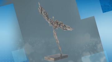 Обявиха номинациите за тазгодишните награди Икар
