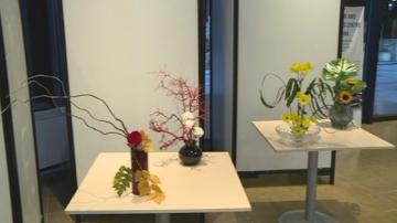 Дните на японската култура във Варна бяха открити с изложба за икебаната
