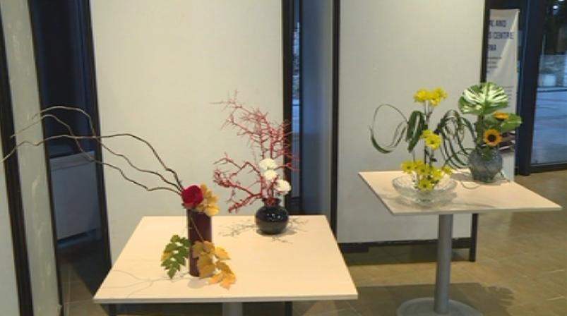 Във Варна Дните на японската култура бяха открити с изложба,