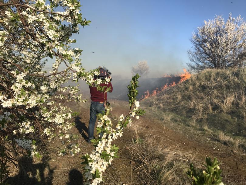 снимка 2 Пожар е възникнал в района на село Равно поле (ВИДЕО)