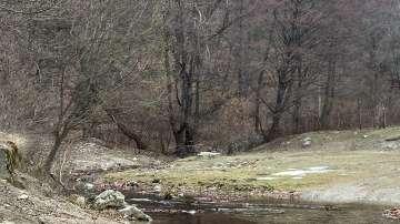Бивш спасител откри телата на изчезналите баща и син в Стара планина