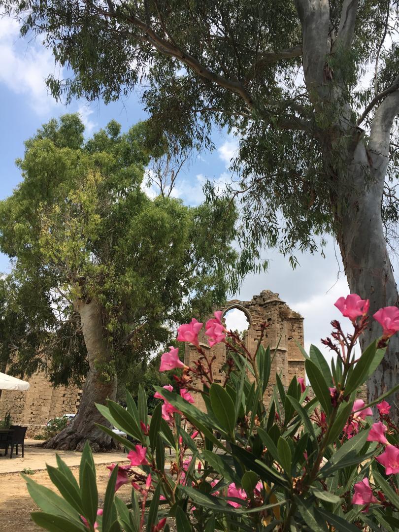 снимка 19 Северен Кипър - средиземноморски бриз край стария фронт