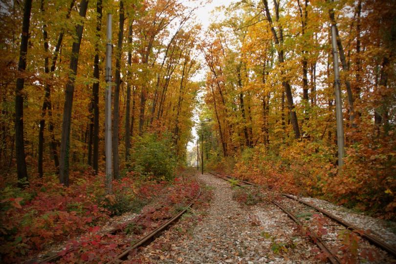 снимка 1 Есента е супер яка (ГАЛЕРИЯ)