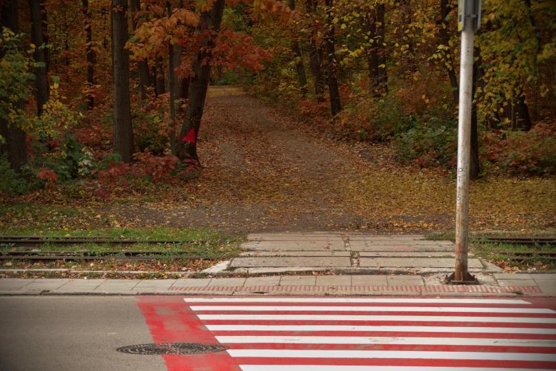 снимка 3 Есента е супер яка (ГАЛЕРИЯ)