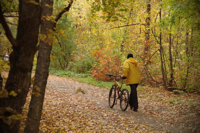 снимка 4 Есента е супер яка (ГАЛЕРИЯ)