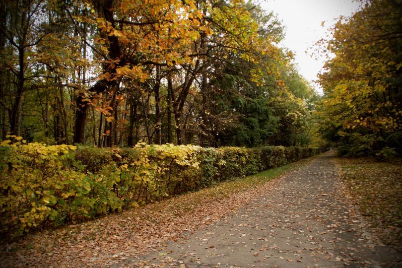 снимка 5 Есента е супер яка (ГАЛЕРИЯ)