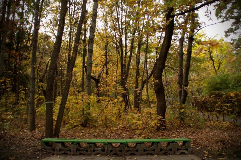 снимка 6 Есента е супер яка (ГАЛЕРИЯ)