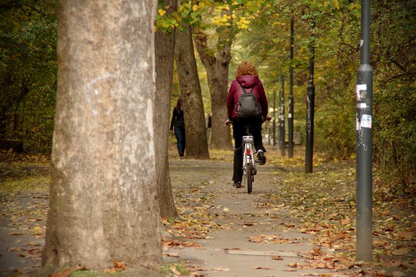 снимка 7 Есента е супер яка (ГАЛЕРИЯ)
