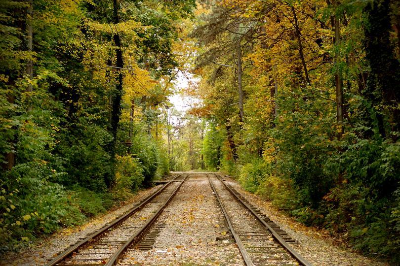 Есента е супер яка (ГАЛЕРИЯ)