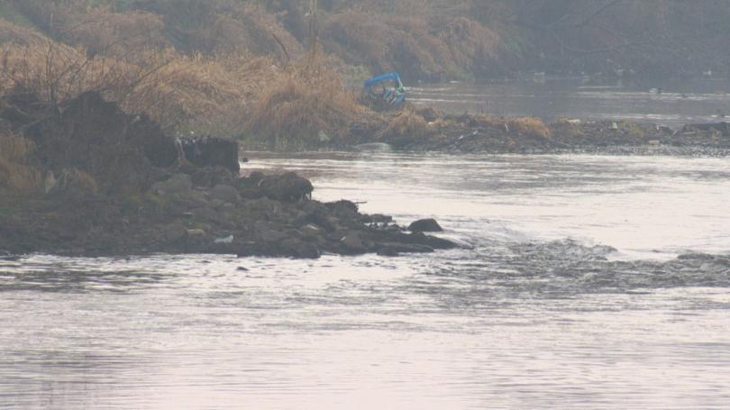 Химическо замърсяване с неустановен засега произход и в река Искър.