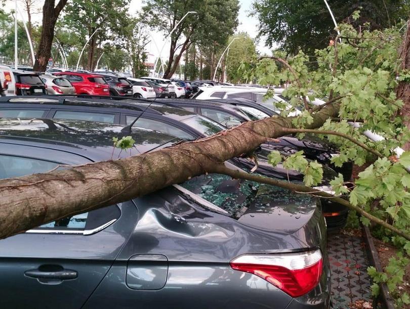 Вятър, проливен дъжд и град се изсипаха над Адриатическото крайбрежие