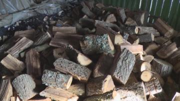 Измами с евтини дърва за огрев в Разградско