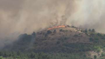 Няма опасност за хората и къщите при пожара в бургаското село Изворище
