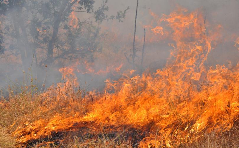 снимка 2 Задържаха 27-годишен мъж за пожара в Сакар планина