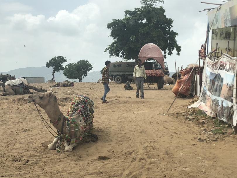 снимка 2 Отвъд границите: Как един индийски блокбъстър може да преобърне живота ти...