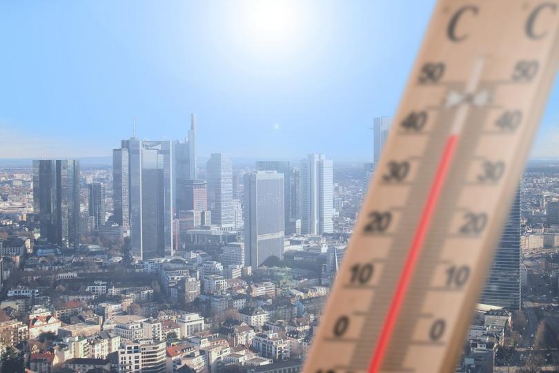 2019 година е била рекордно гореща