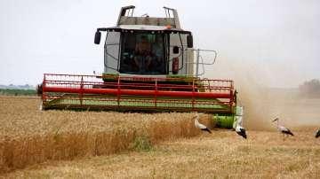 Жегата в Европа застрашава зърнените култури