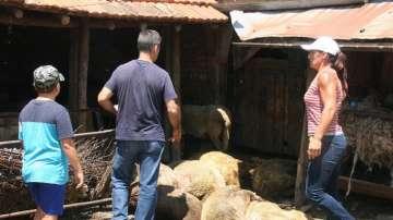 Нормална е обстановката в боляровското село Шарково