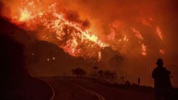 Пожарите в Калифорния са изпепели над 57 000 хектара