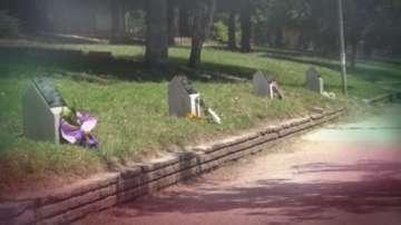 Алеята на войнската слава в Карлово се сдоби с 5 възпоменателни плочи