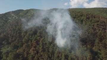 Огънят в гората над Карлово се възобнови, ситуацията е под контрол
