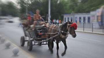 В Казанлък протестираха срещу движението на каруци по пътищата