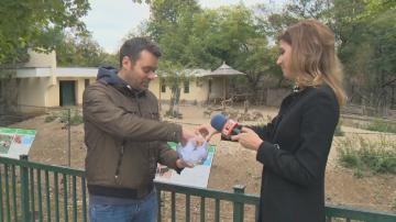 Зрител на Сутрешния блок на БНТ избра името на бебе кенгуру в Столичния зоопарк