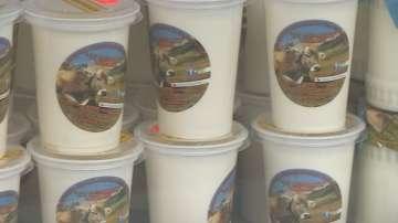 Земеделското министерство не подкрепя промяна в БДС стандарта за киселото мляко