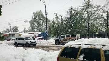 Априлският сняг в Кишинев причини щети за 50-70 млн. леи