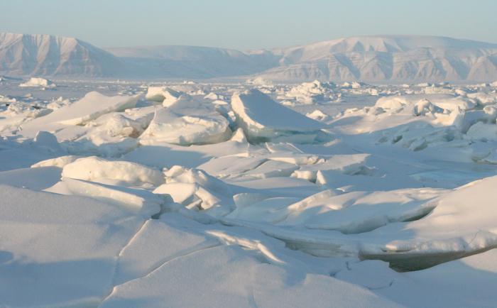 1 година на дрейф с кораб в полярните ледове -