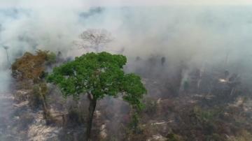 Промените в климата се превръщат в най-голямата заплаха за човешкото здраве