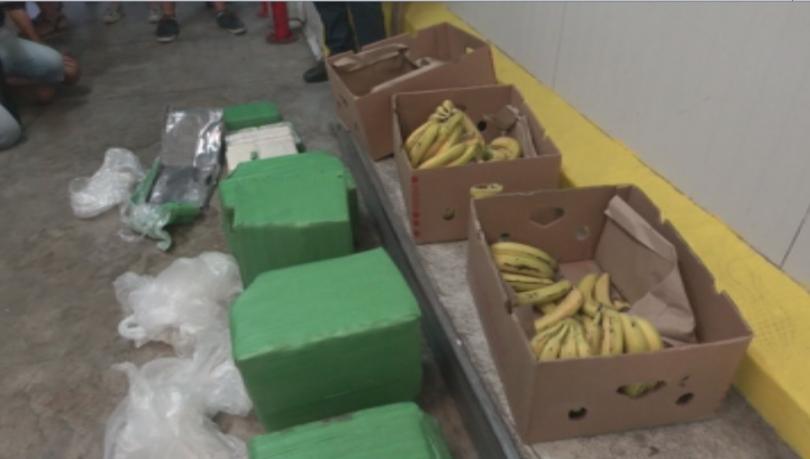 Снимка: Откриха кокаин за над 2,5 млн. евро в пратка с банани в Бургас