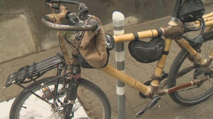 Да обиколиш света на колело? Подобни пътешествия станаха изключително популярни