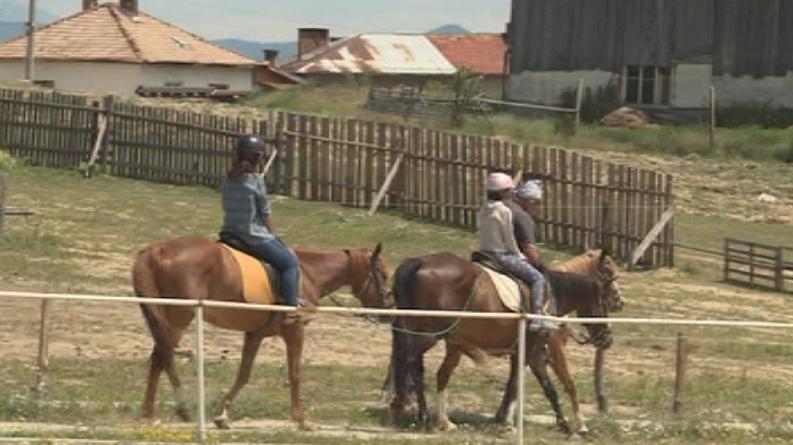 Планинският туризъм съчетан с конна езда става все по-популярен избор