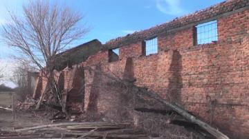 Разследват пожара, при който загинаха 11 елитни коне край село Сираково