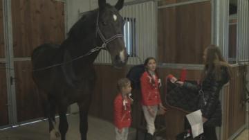 На Тодоровден: Какво не знаем за конната езда?