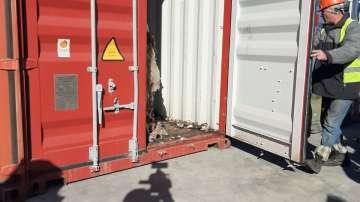 Започва реекспортът на контейнерите с боклук, внесен незаконно от Италия