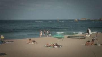 Кабинетът прекрати концесиите за плажовете на Делфин и Корал